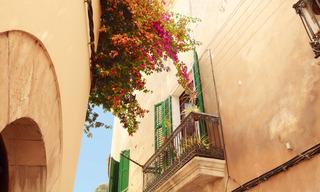 Mittelmeer mit Ibiza